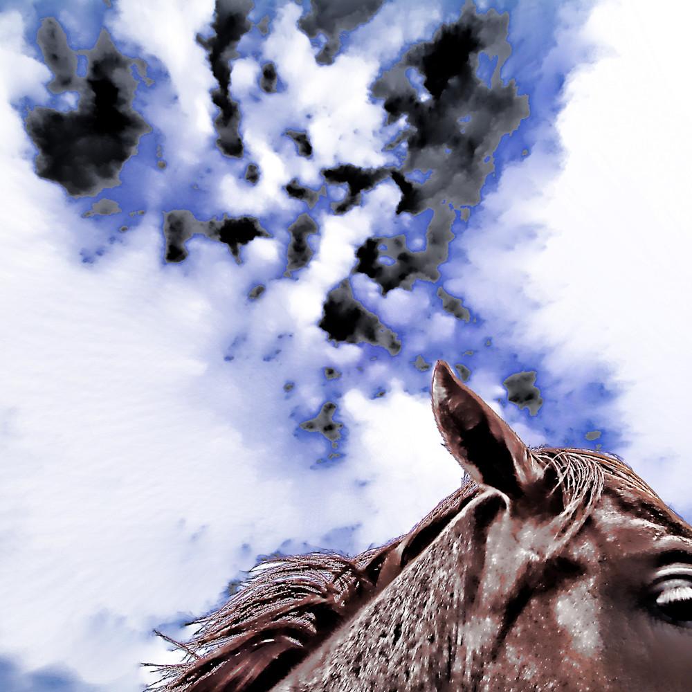 Night mare m79arj