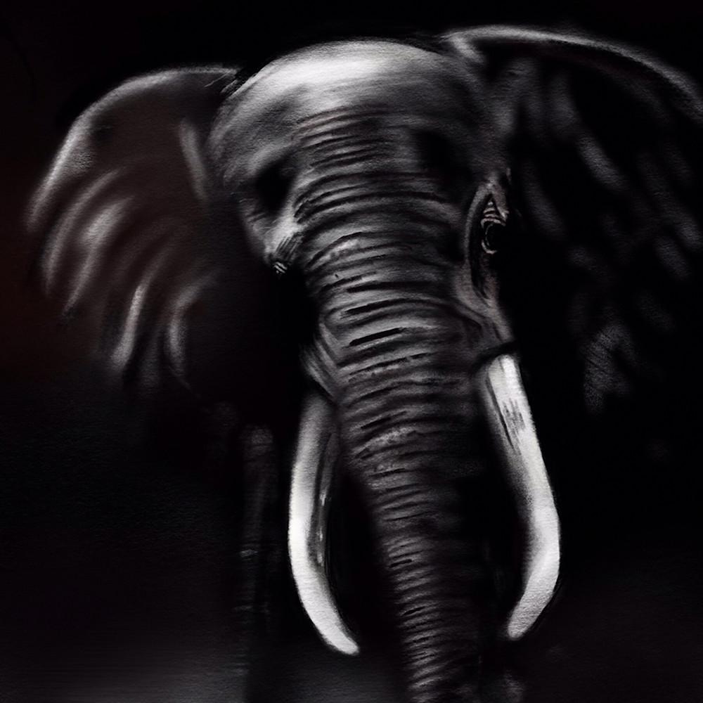 Elephant print ready yldjaq