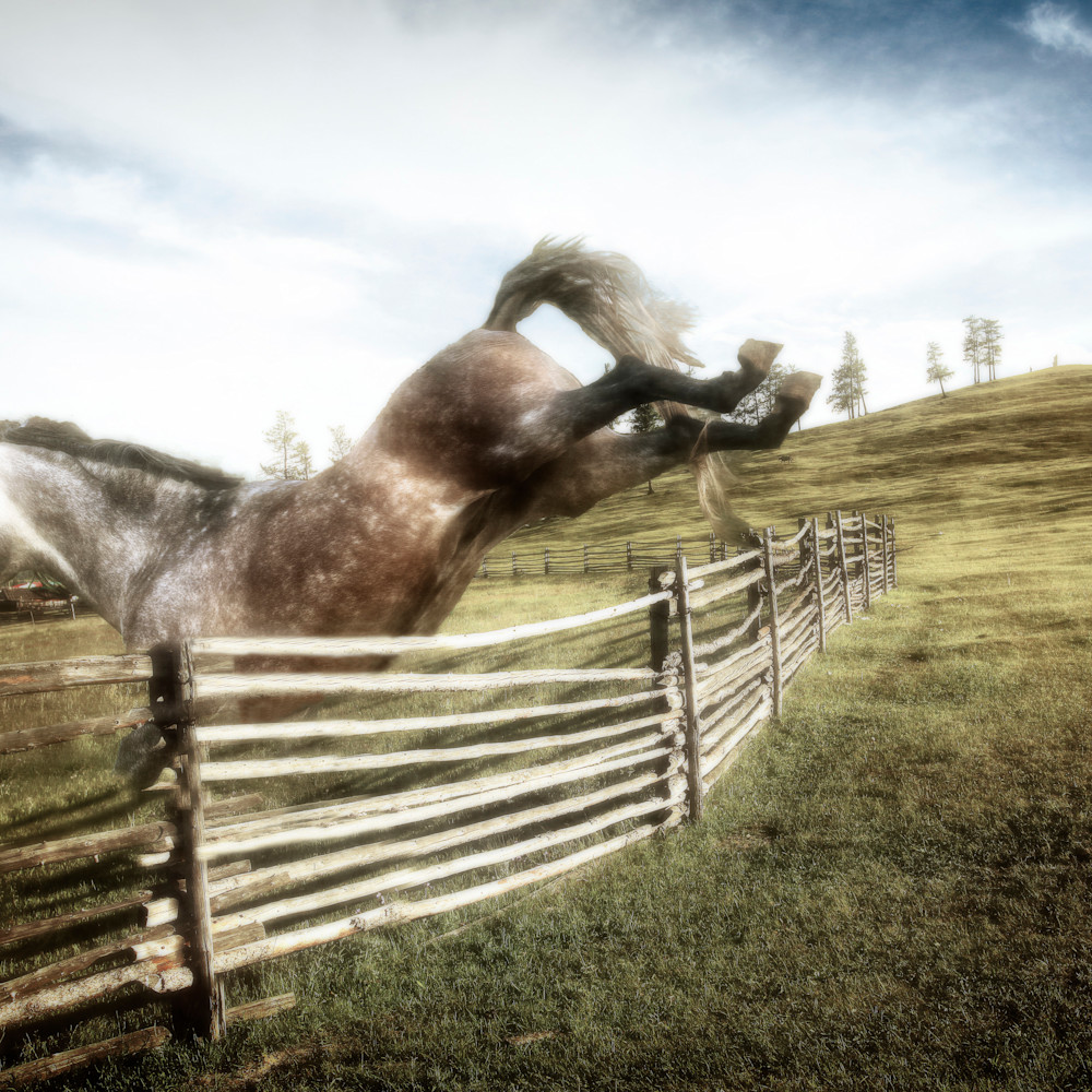 Joyful jumping gh00jn