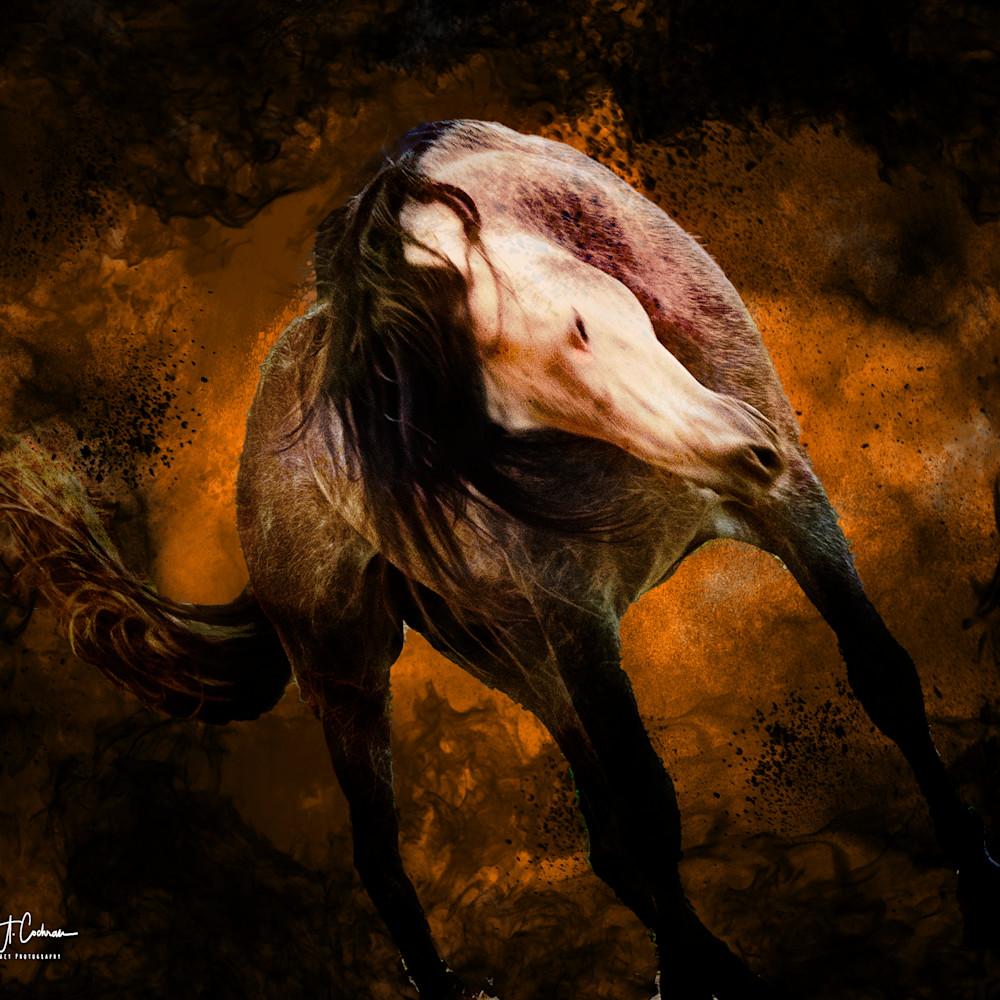 Equine inferno 2a zrbpdq