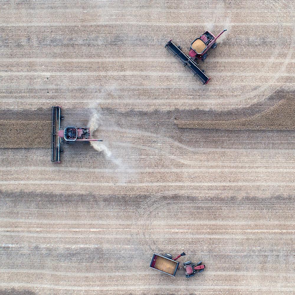 Harvest squaredance tflom6