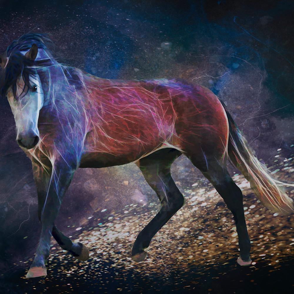 Equine skyscape tmru9m