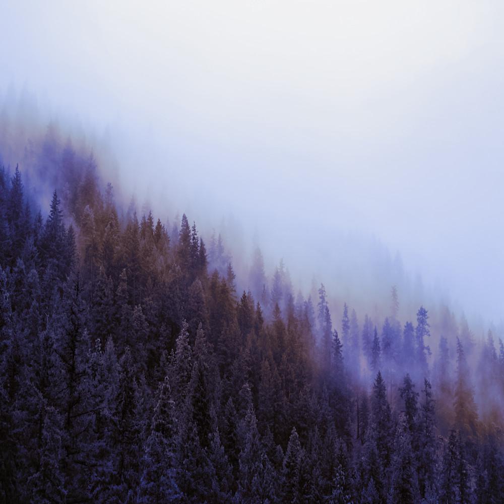 Wenatchee national forest mv2dsp