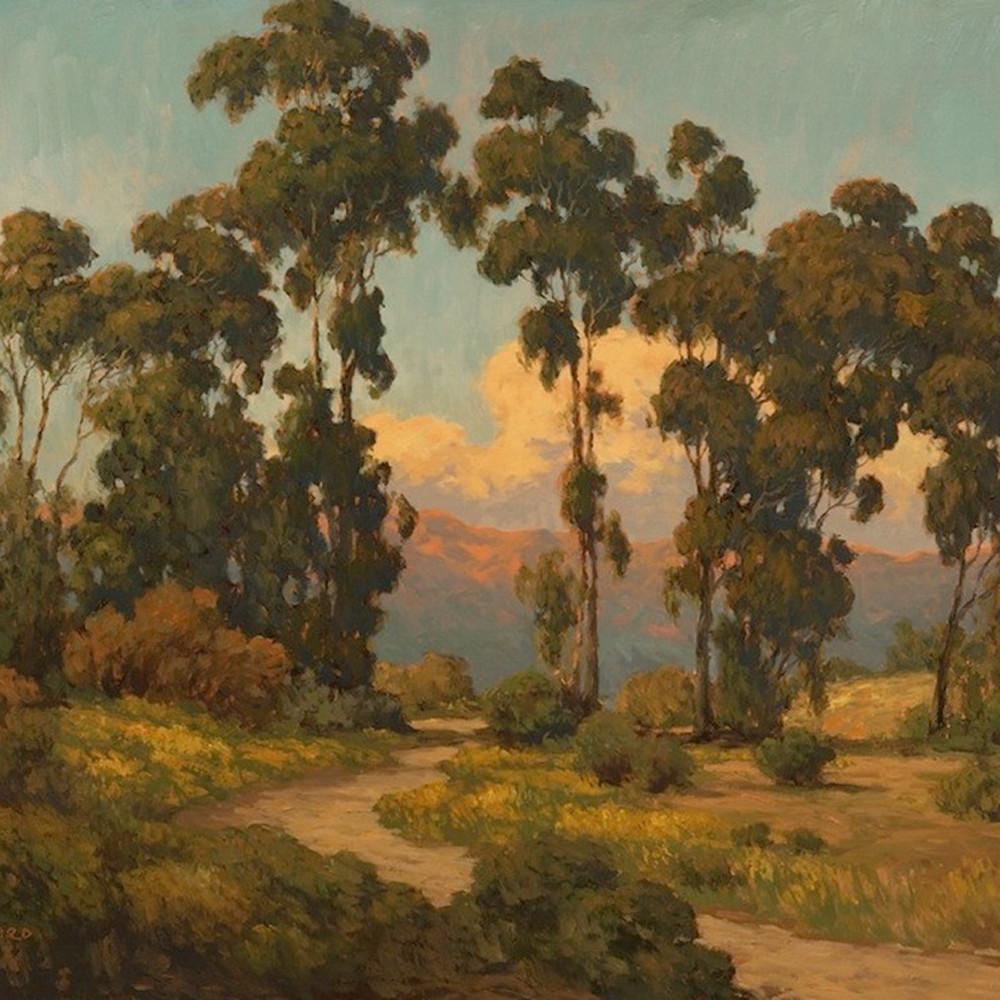 Trail through eucalyptus by daryl millard rk4bnt