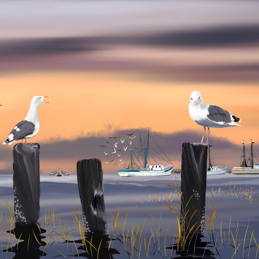 Seagulls facebook indian summer eventide hwfmge
