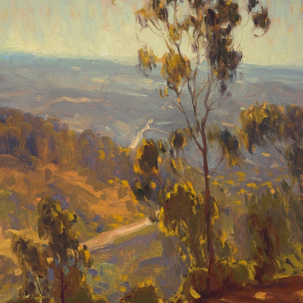 Sunlit trails by daryl millard mtpzkc