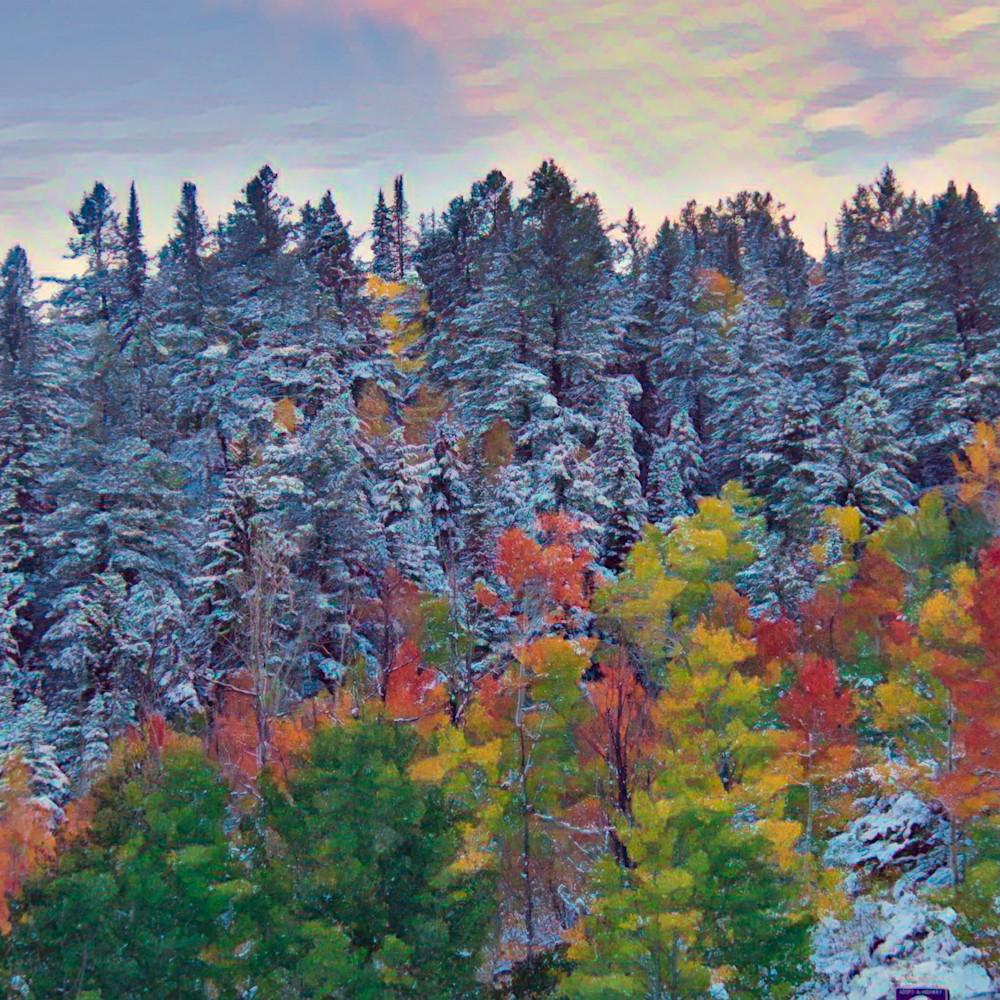 Autumn to winter t0payv
