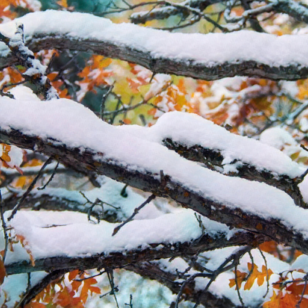 Colors of winter 2 vk3vcr