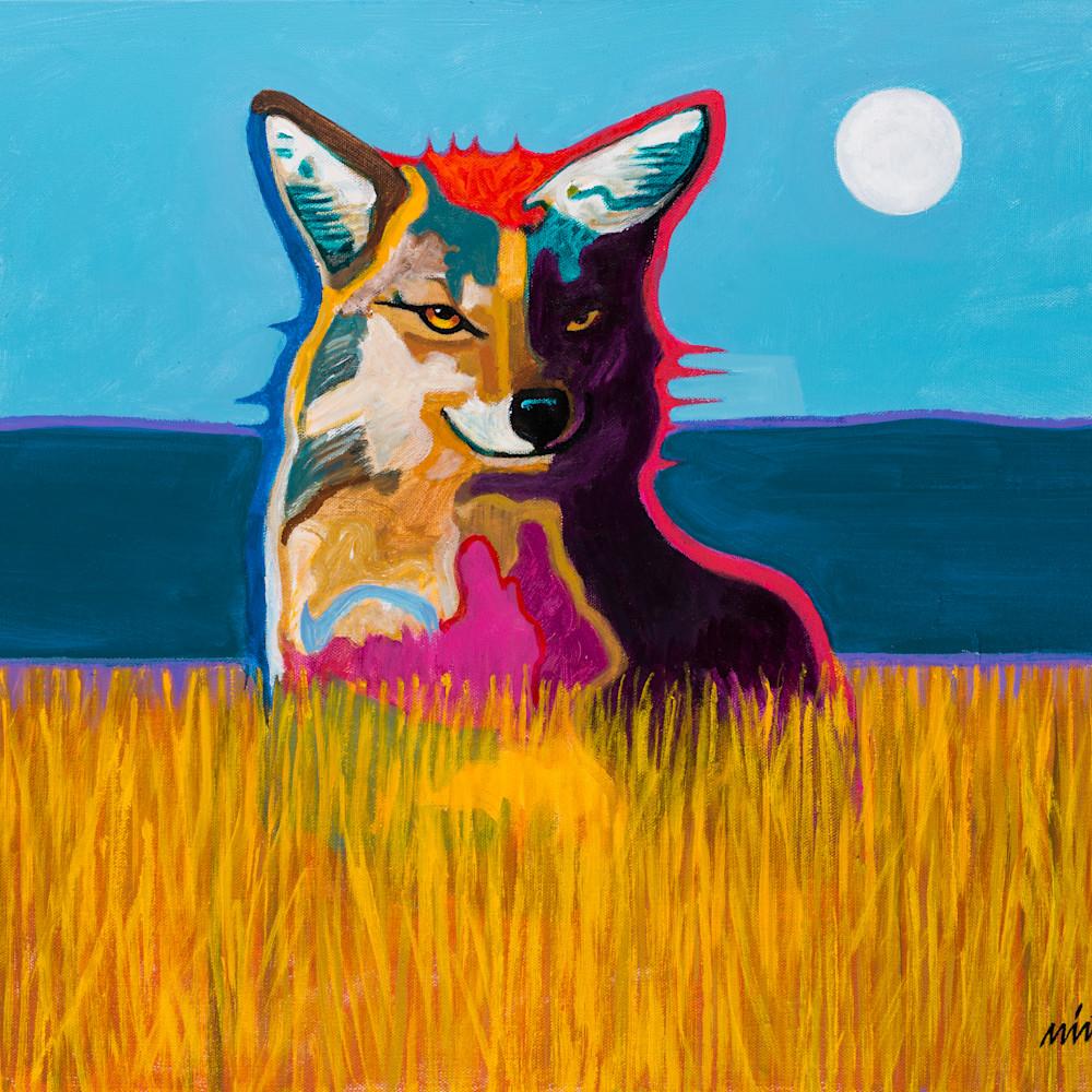 Coyoteinafield 02 n5gsvn