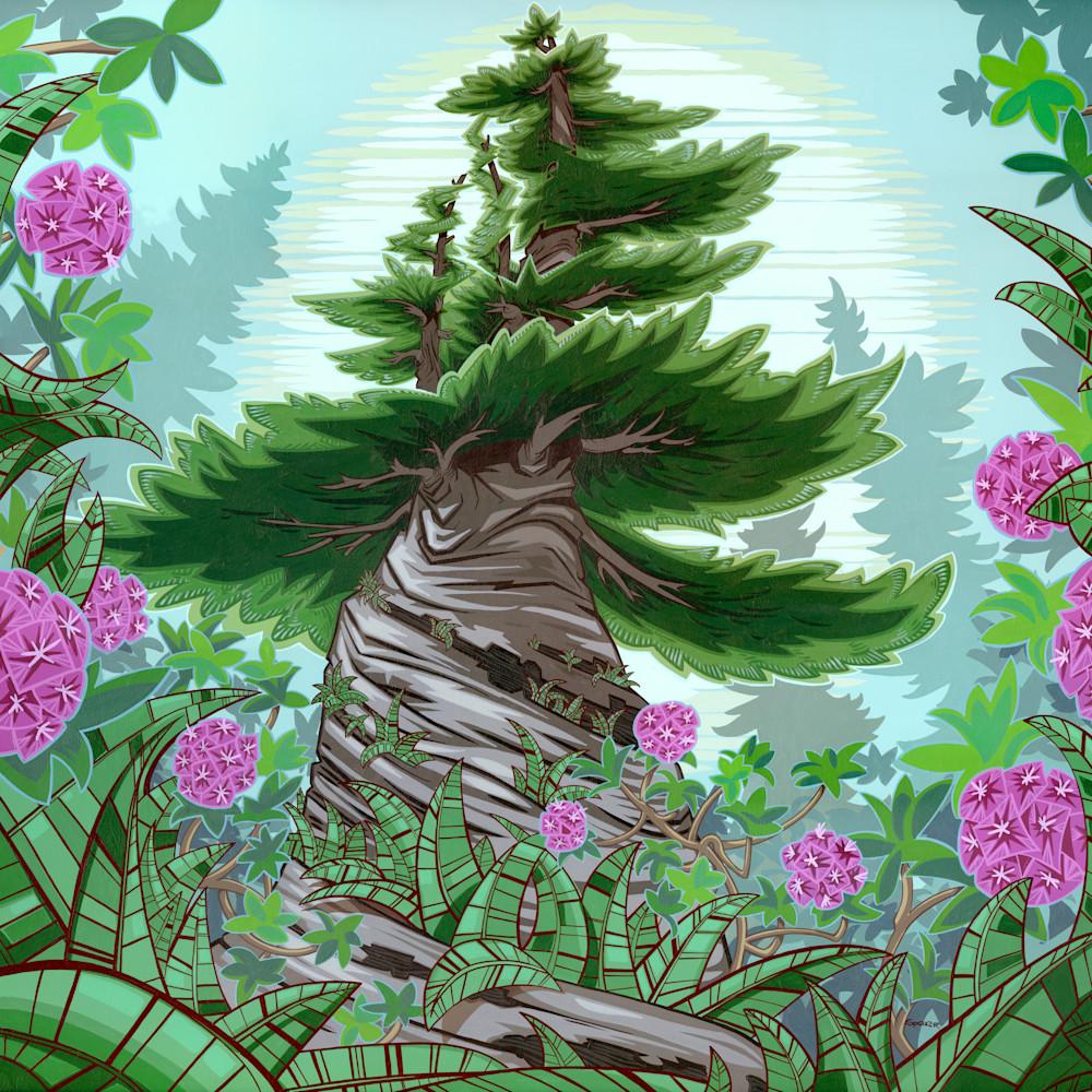 Twisted tree amz7qp