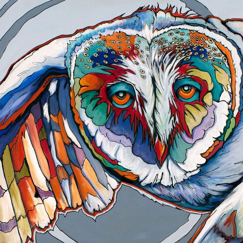 Barn owl p2jeqr
