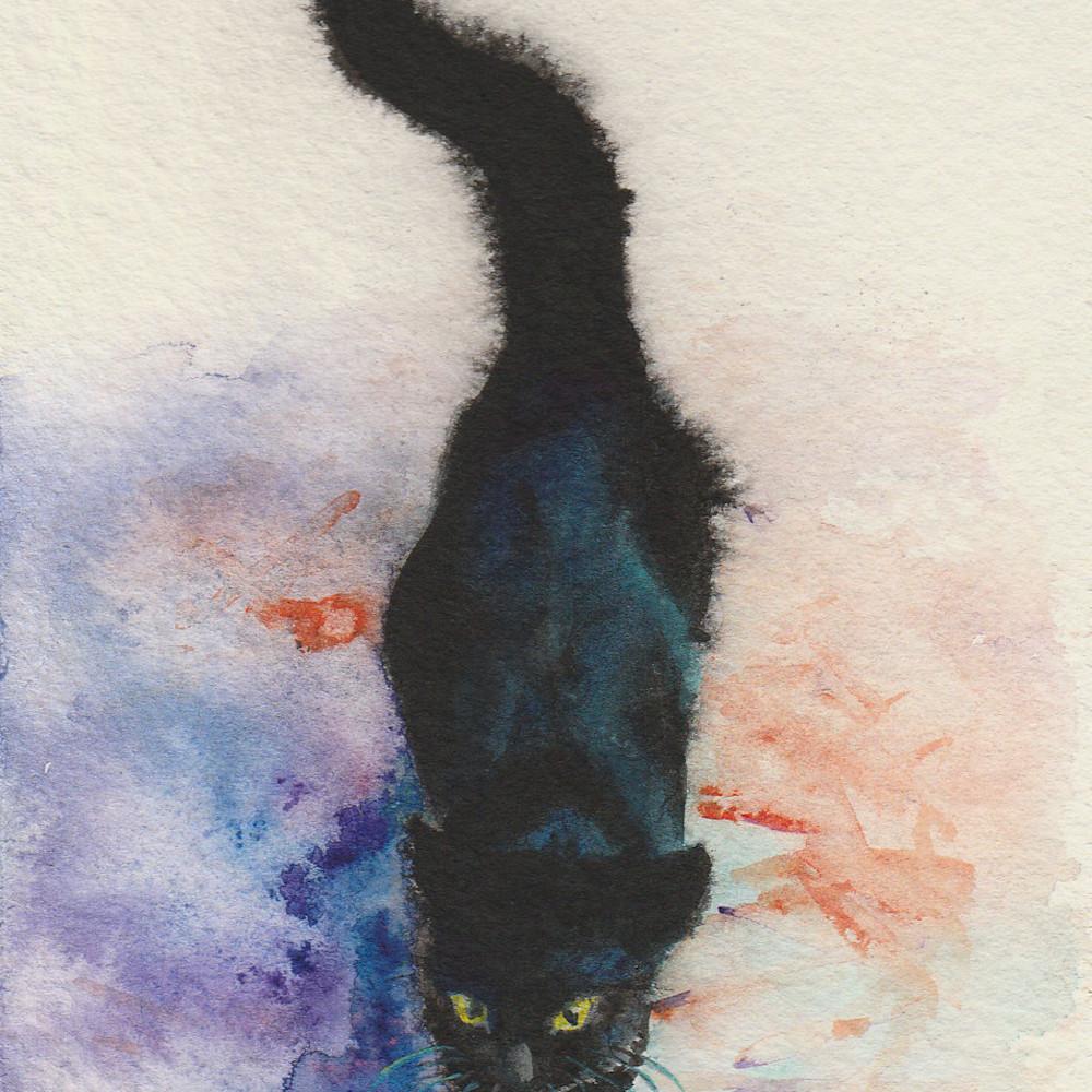 1 black cat strolling 1 4x6  02 zqhjbu