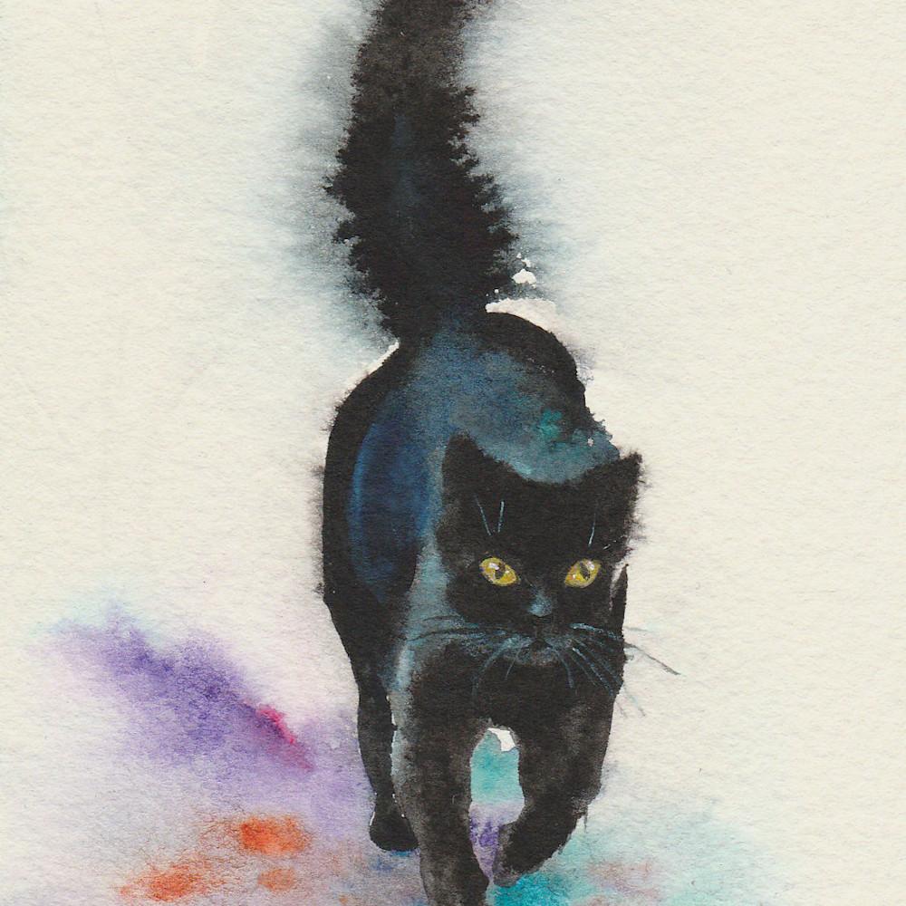 3 black cat strolling 3 4x6  02 ax5fmx