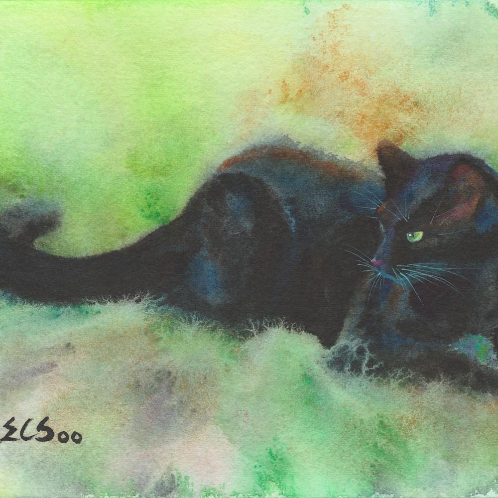 13 black cat outing 5x7 k2l6ux