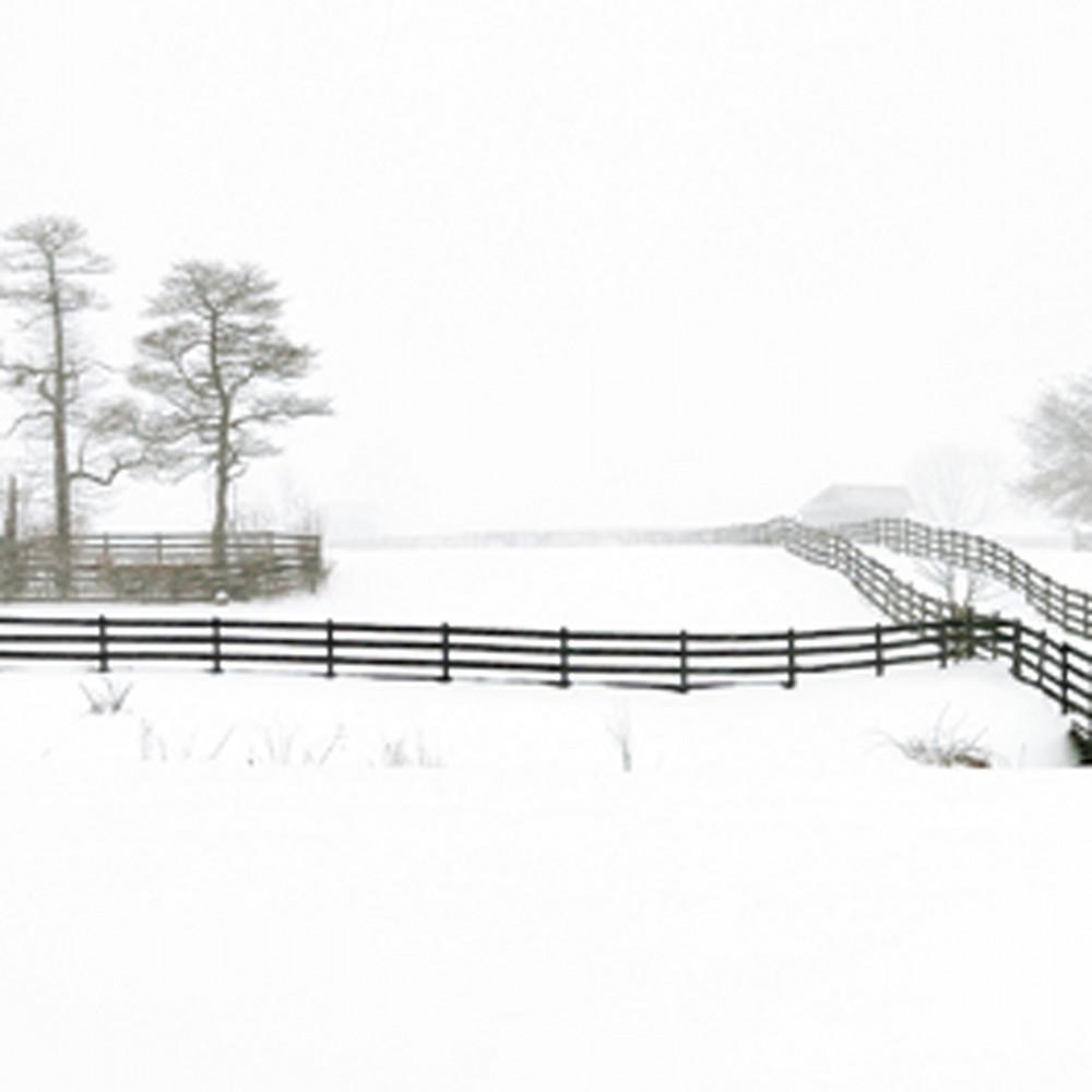 Bucks county fences   michael sandy gv2j5y