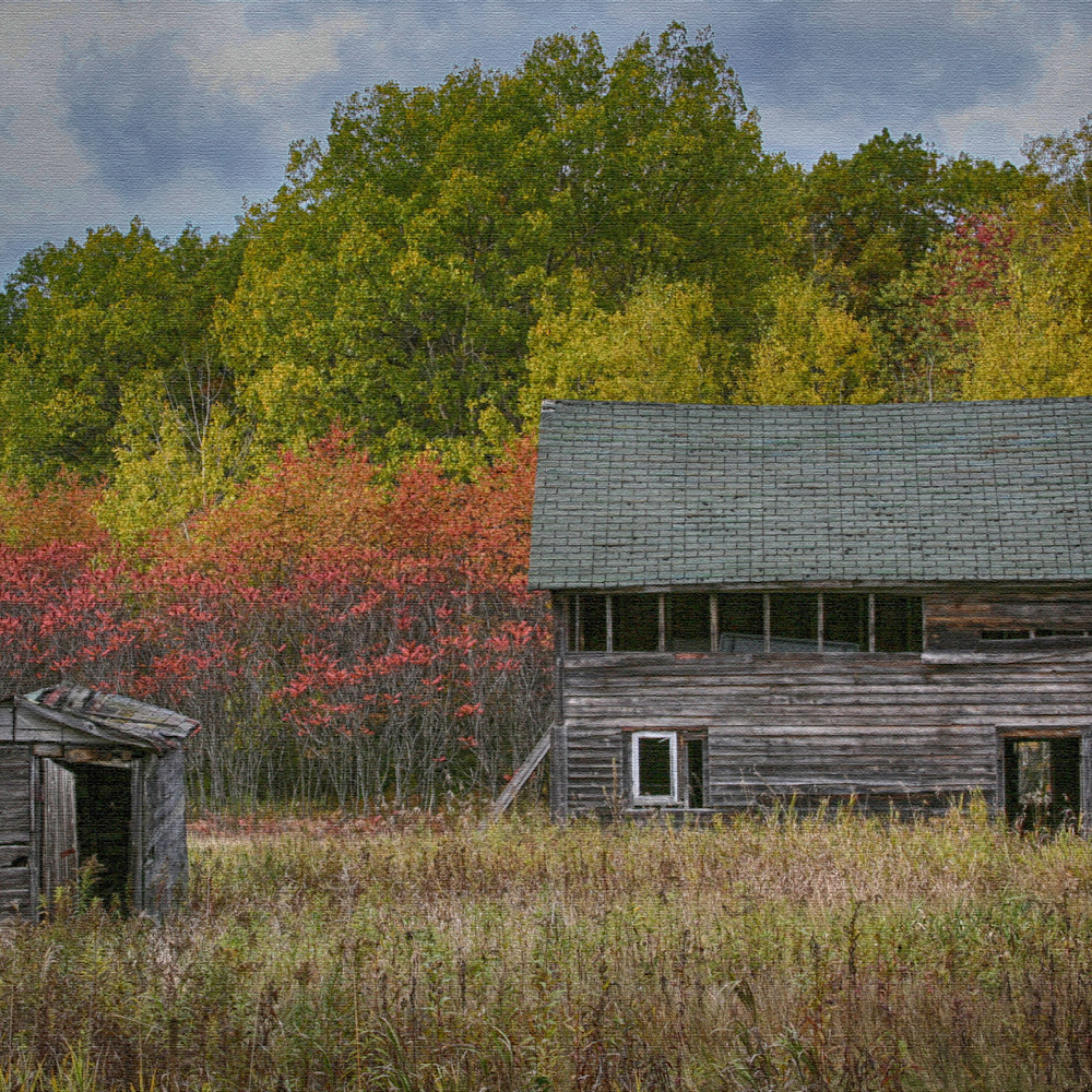 Fall in the northwoods 3 nsyjzu