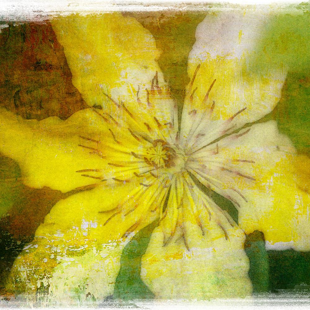 Flowers 15 gi1sa4