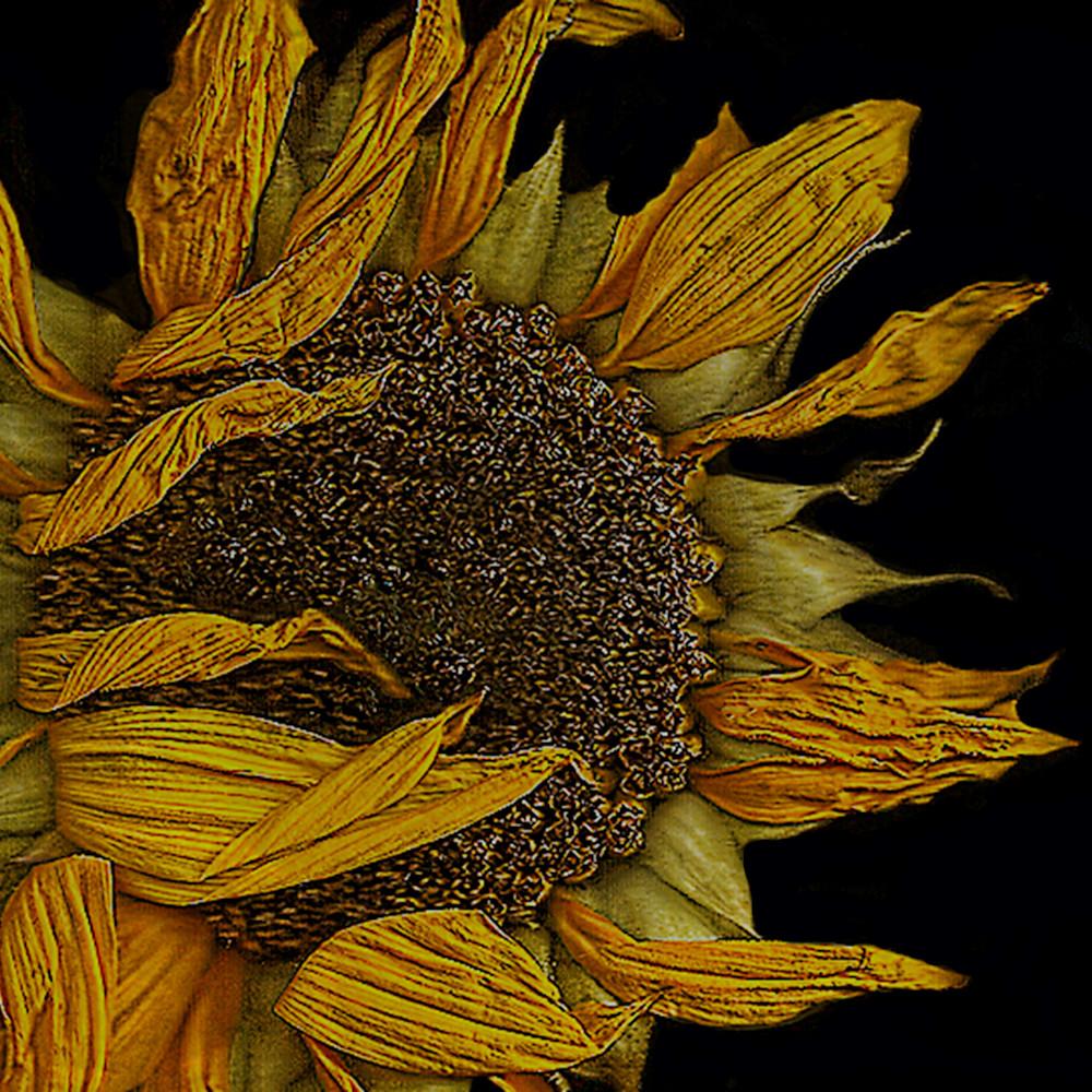 Flowers 21 psahqe