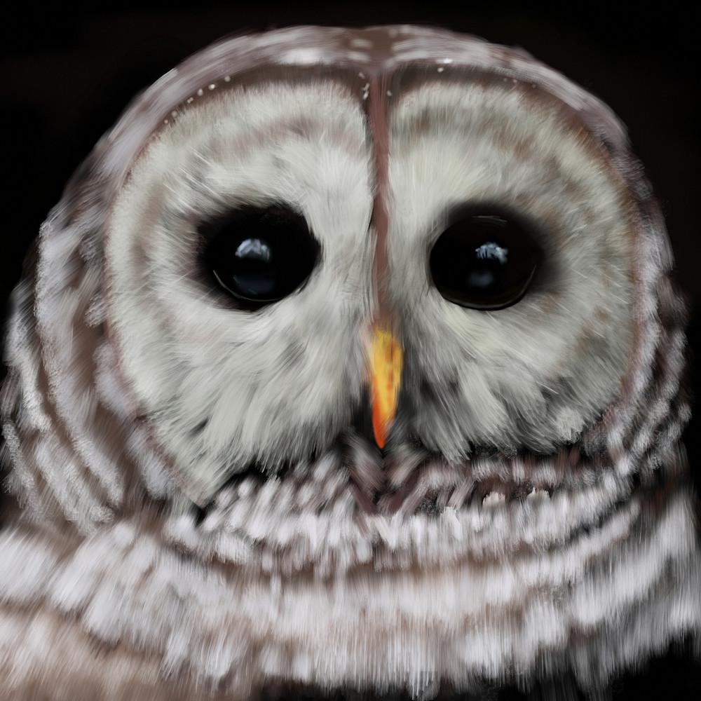 Crestwood owl facebook evezhl