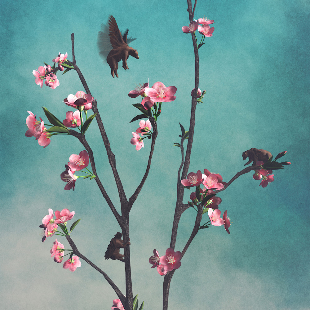 Cdecker hummingbears 7000 gd0pmr