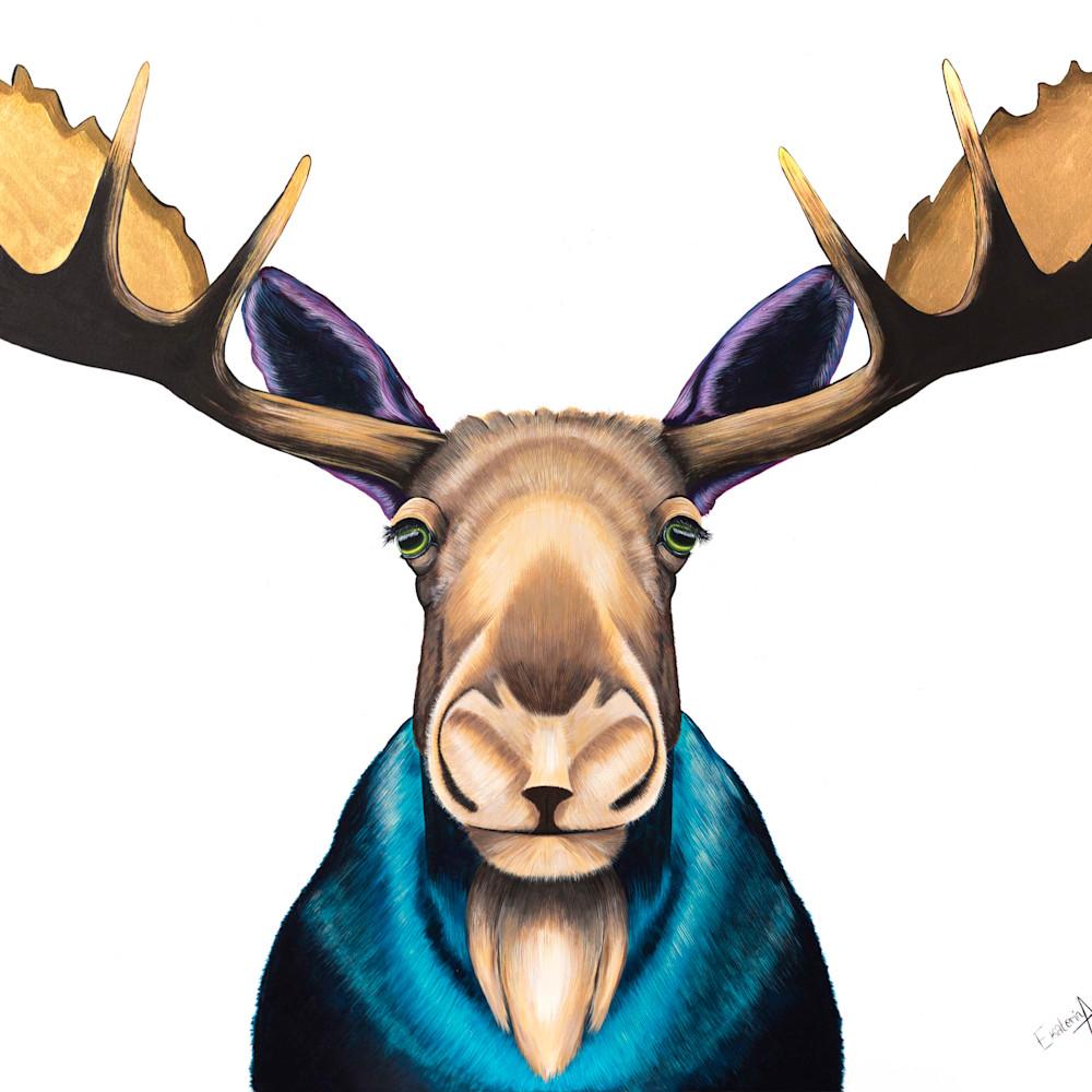 Moose dc2pf4