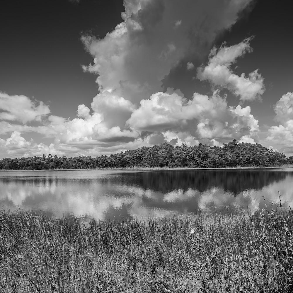 Everglades 001 zwohci