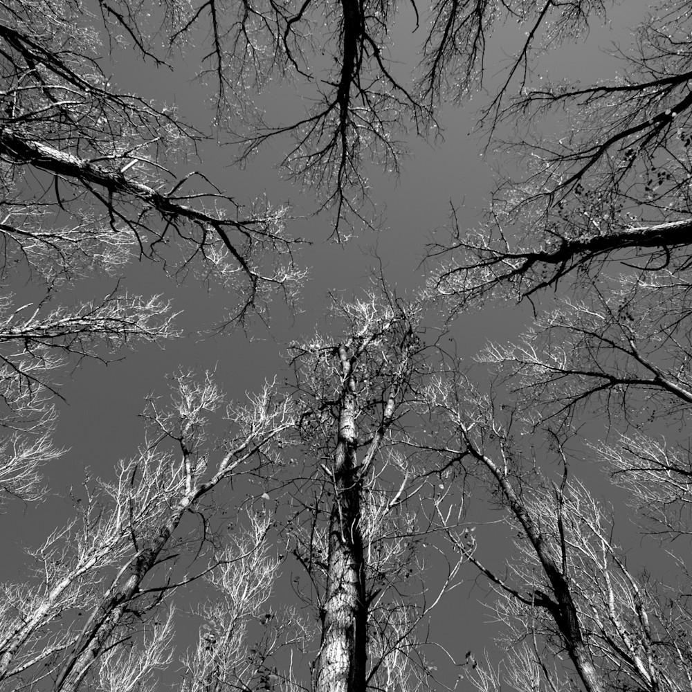 Reach john tucker park paterson hunter valley nsw australia o2uqw2