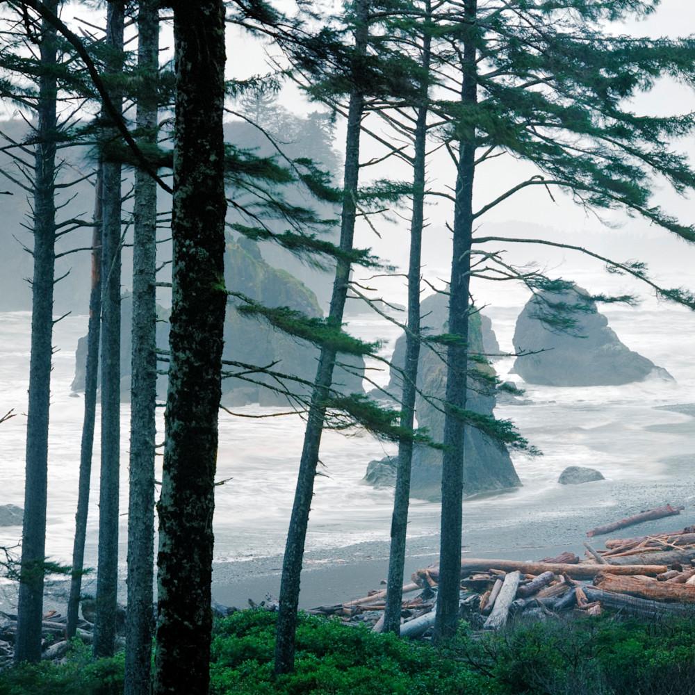 Guardians of the coast bpprint hr25af