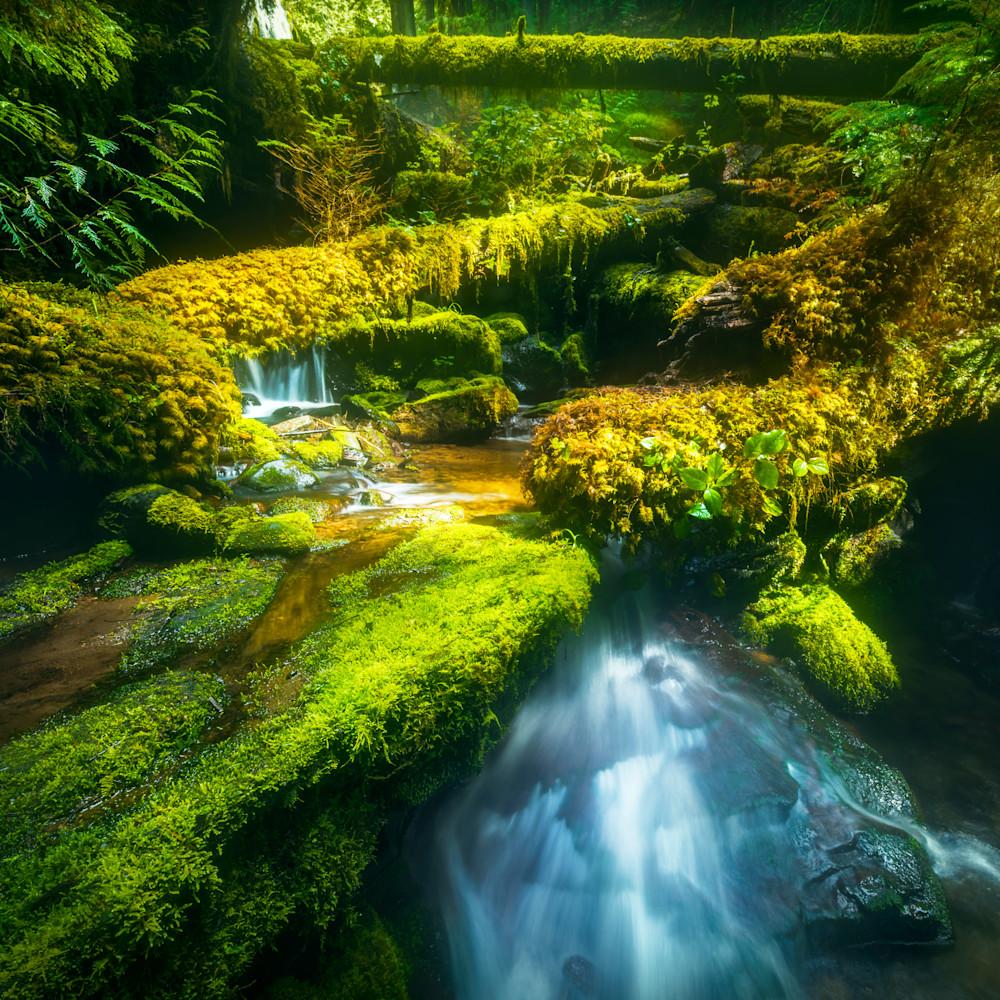 Panther creek grotto asf vuzclx