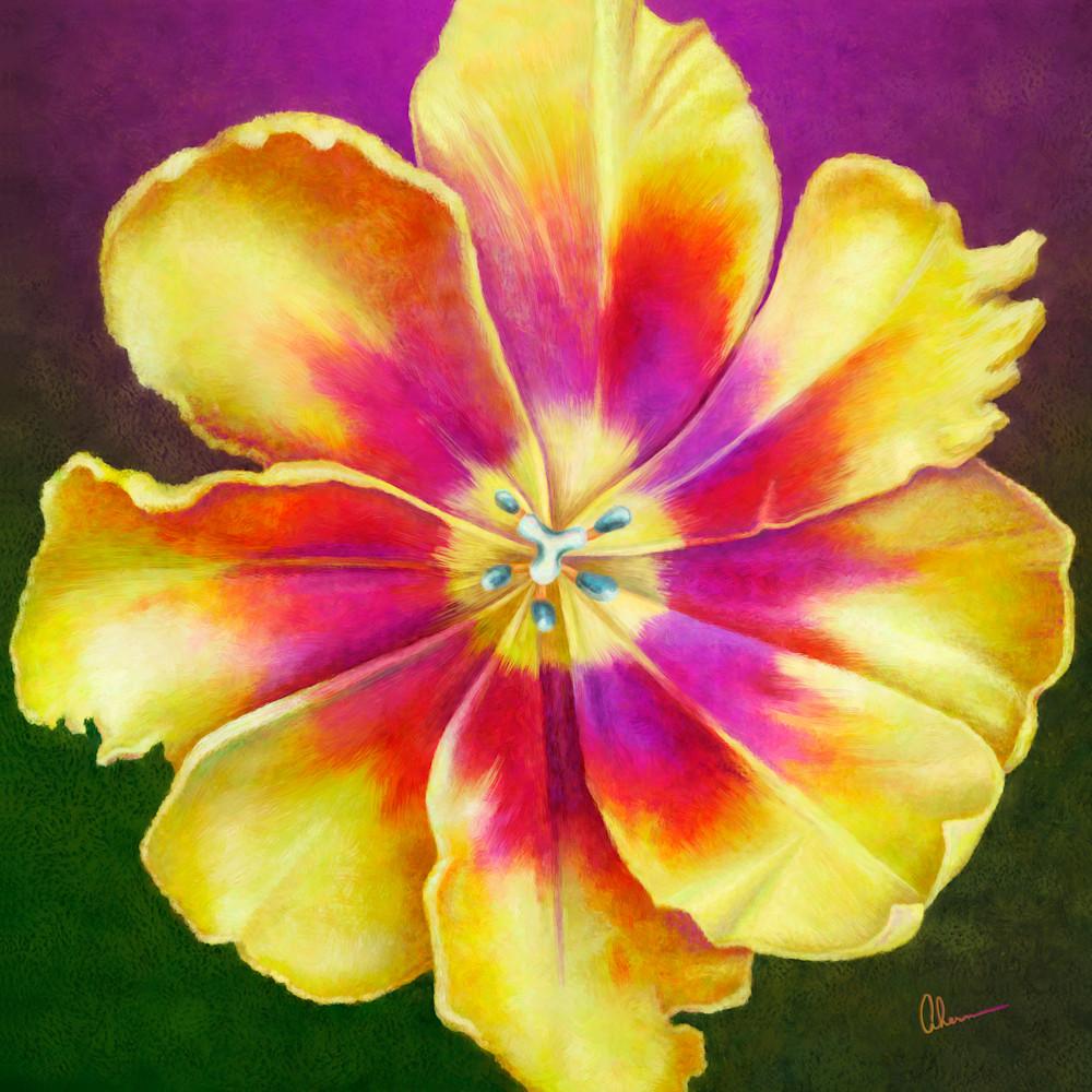170221 ahern yellow tulip squared 30x30x300 metal print buklle