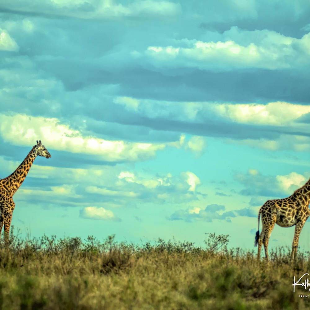 Africa landscape  6999 tuwg6n