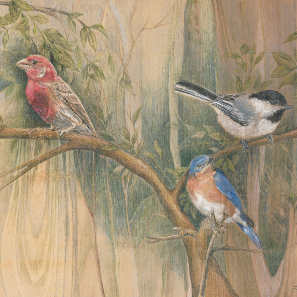 3 birds together 1 2 v1upos
