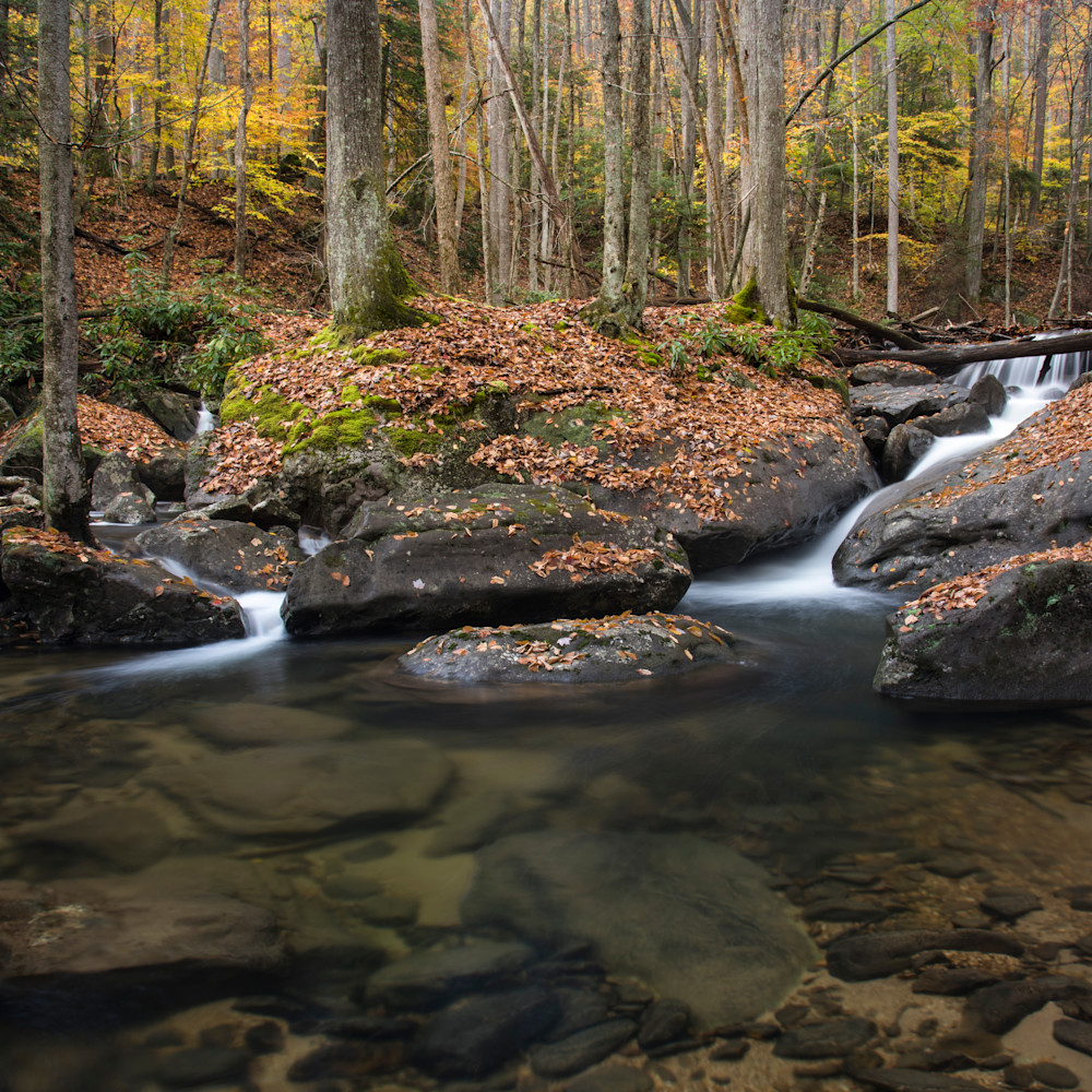Andy crawford photography west virginia 20171103 9 fq04vu