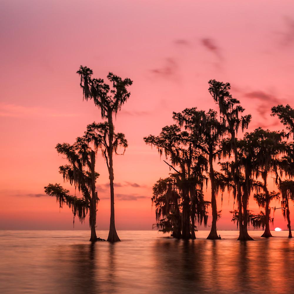Andy crawford photography lake maurepas 0515 3 stvj0x