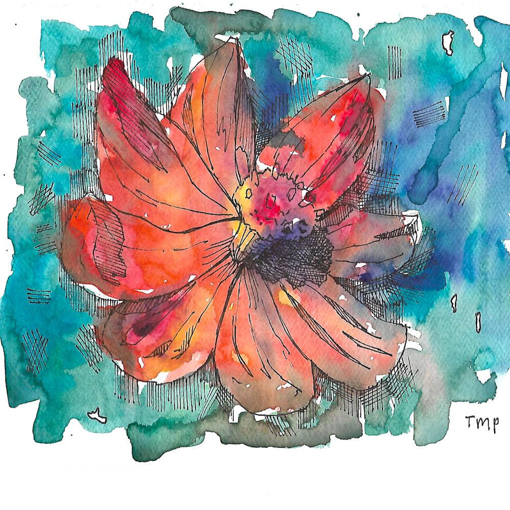 Orange flower vdi6ej