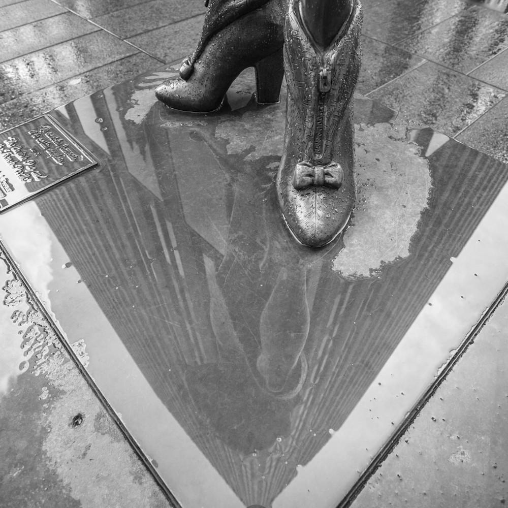 Puddle reflection zym5wp