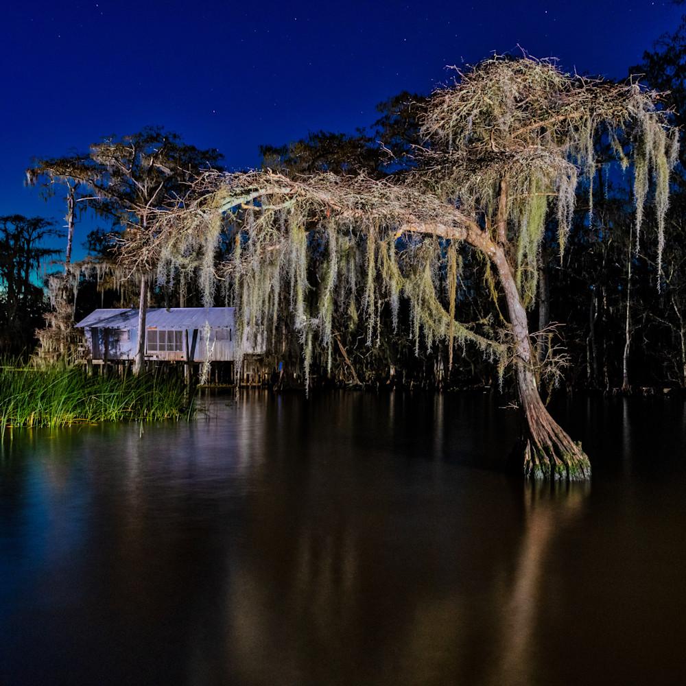 Andy crawford photography 190106 lake maurepas swamp 001 uucqpp