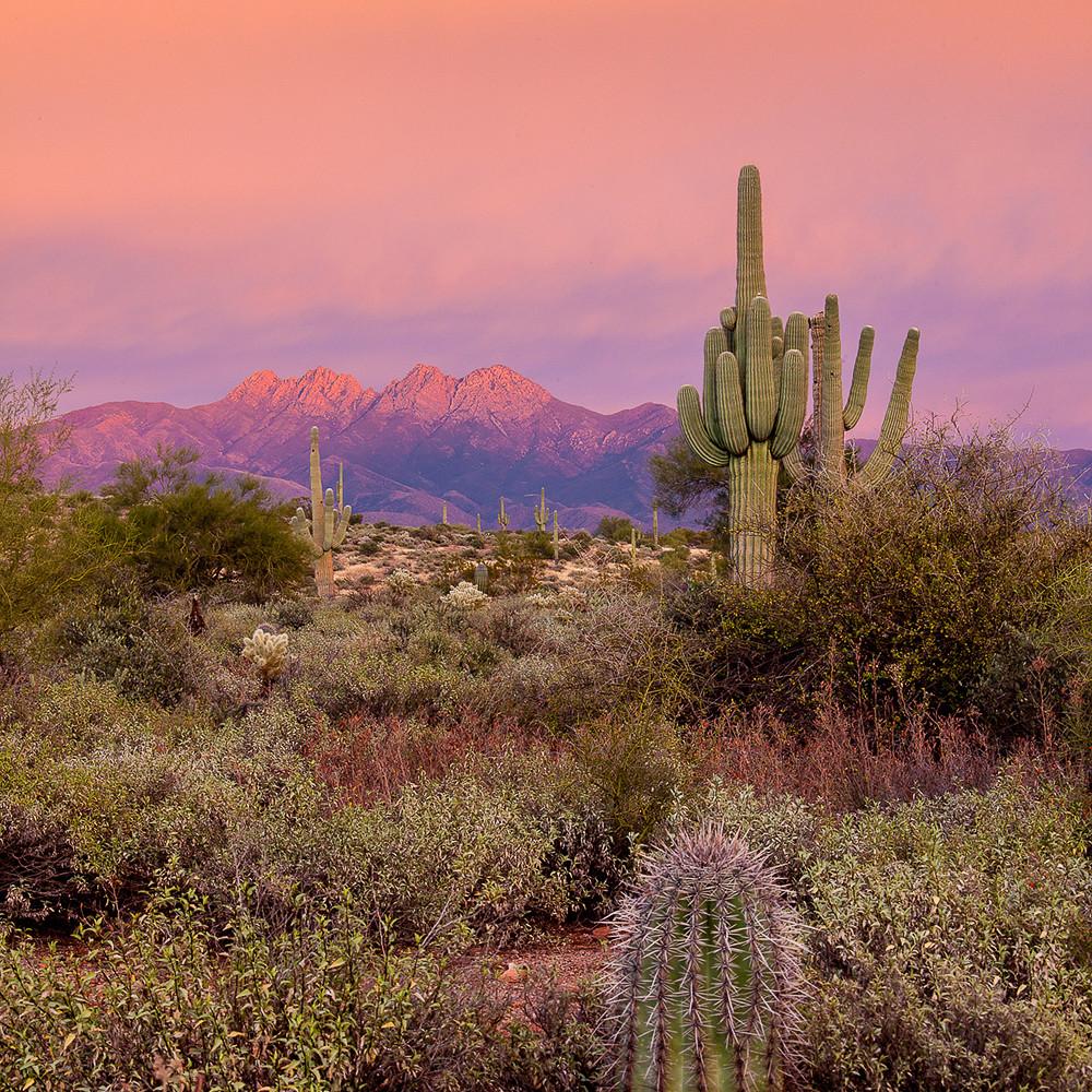 Four peaks   sunset pink v mg 4721v2  xyyenr