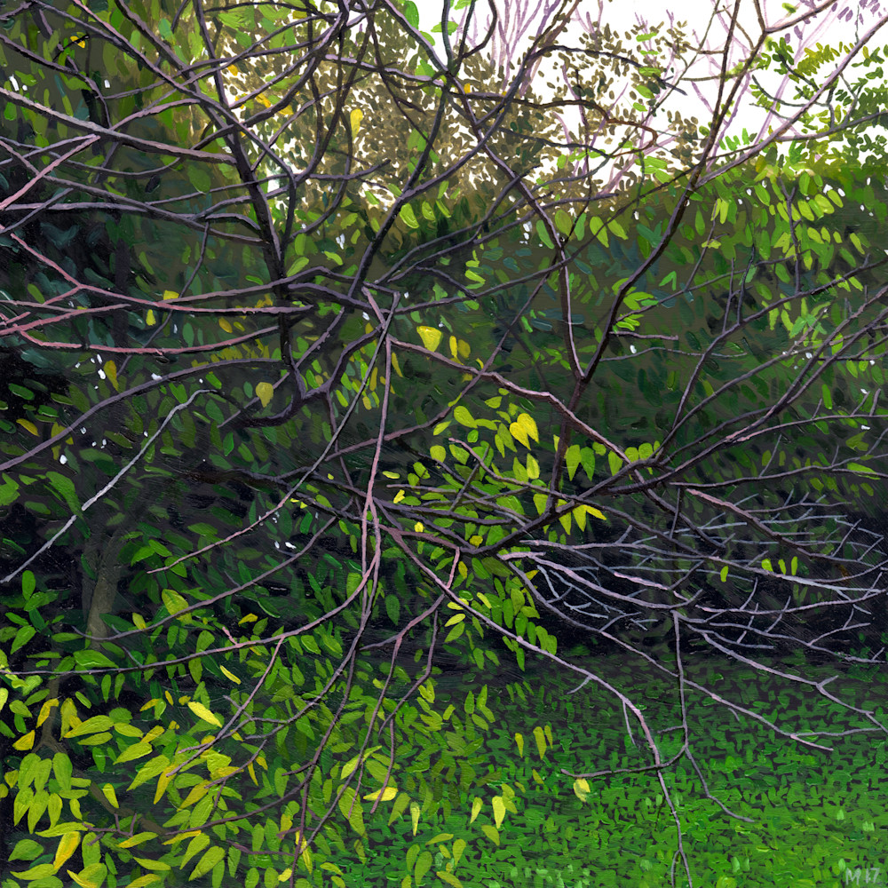 Green world clean qsaue0