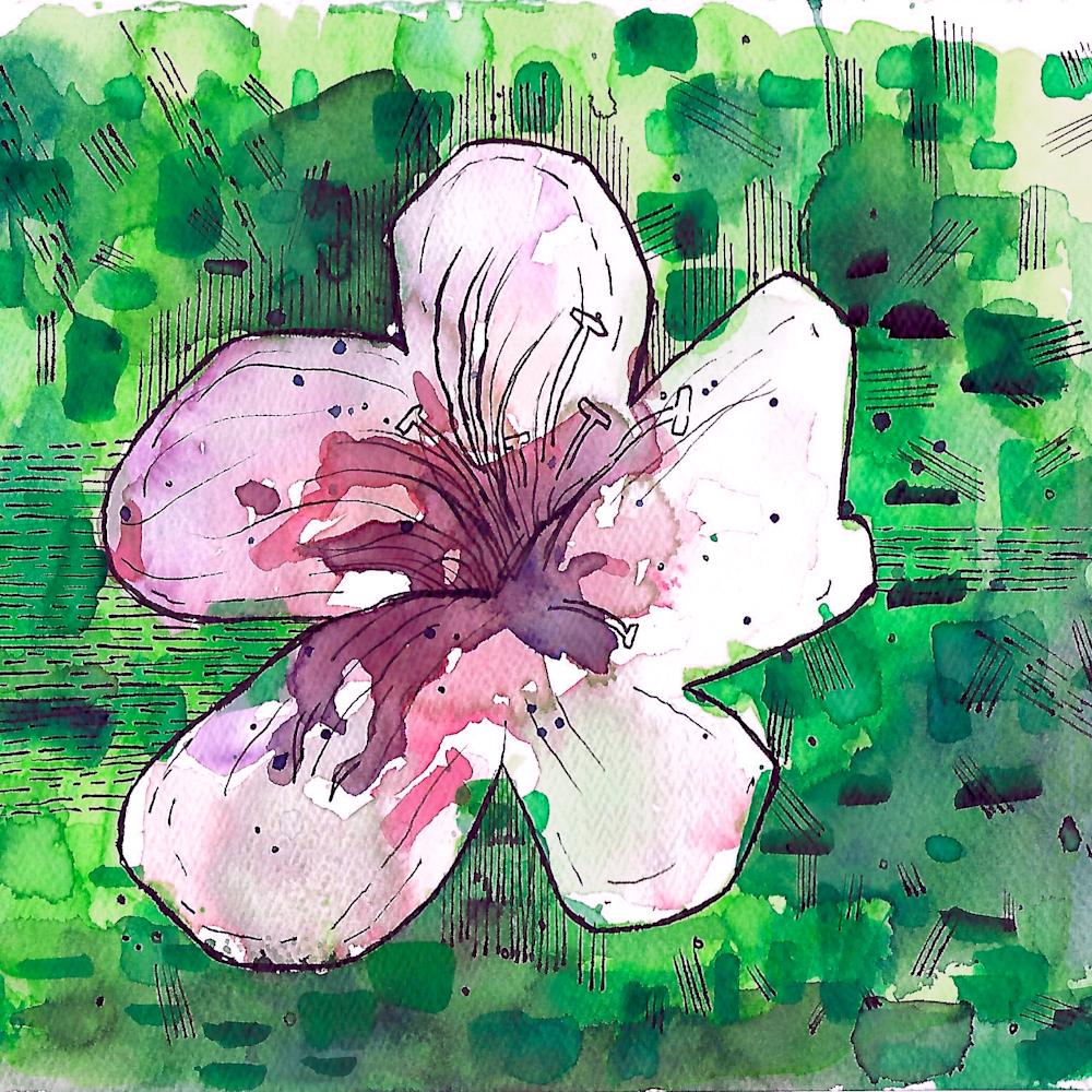 Experimental flower png zknxpc