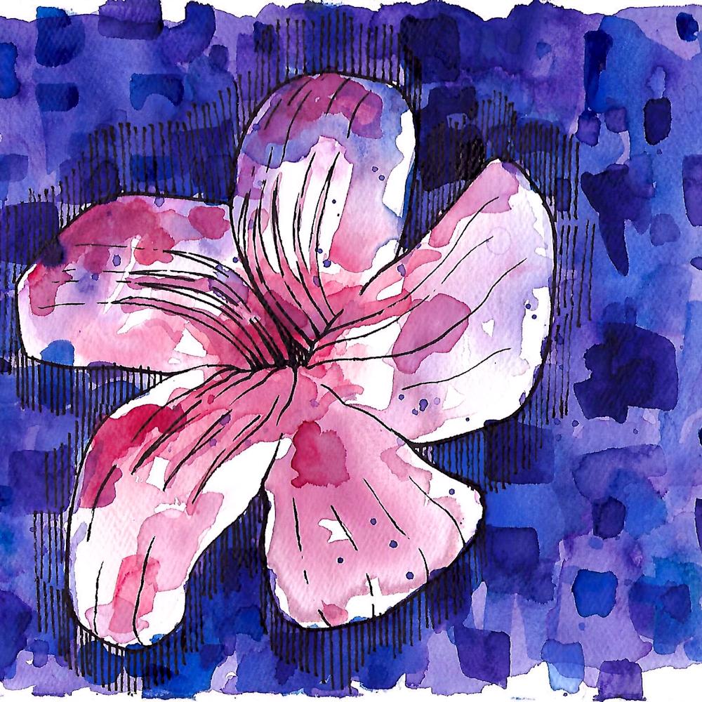 Magenta flower rdqy52