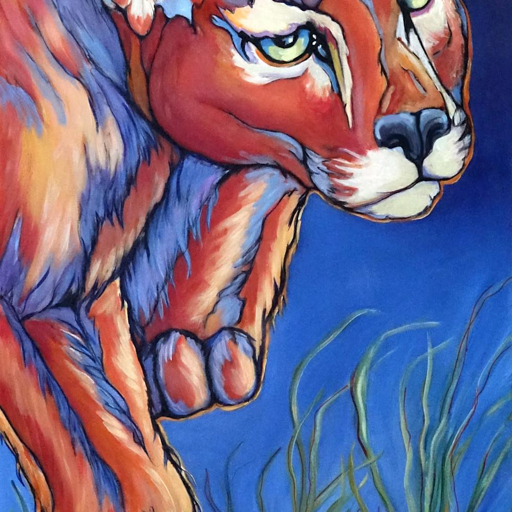 Puma nbfxis