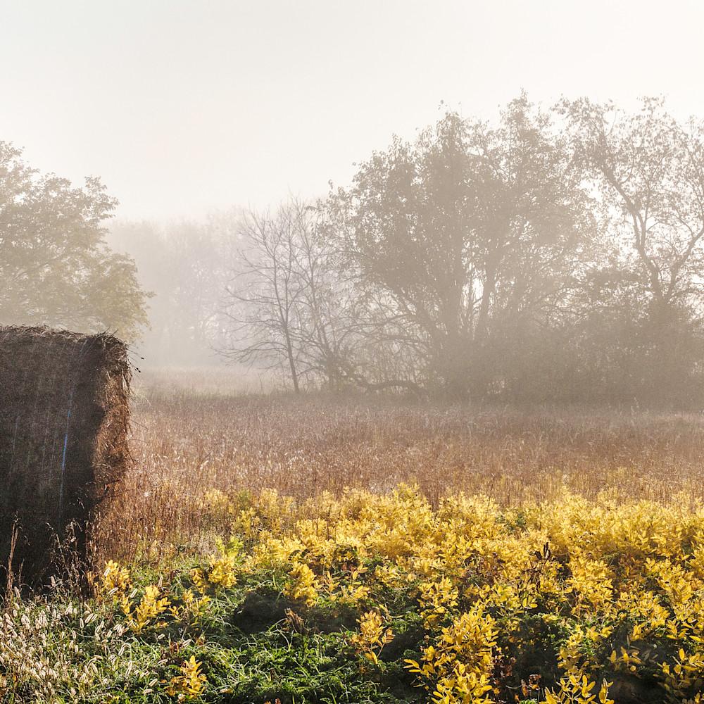 Hay bales and autumn fog 1 vmo6es