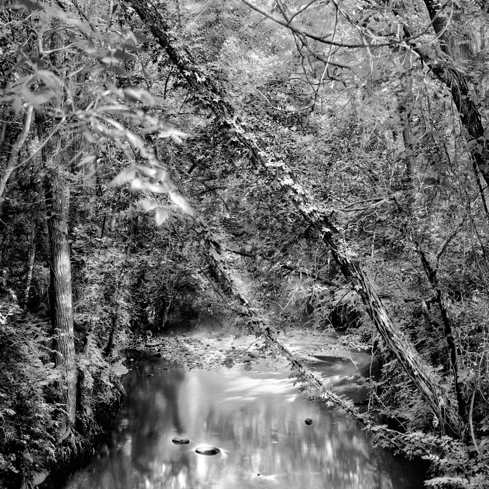 Shunga creek bw g4e2jo