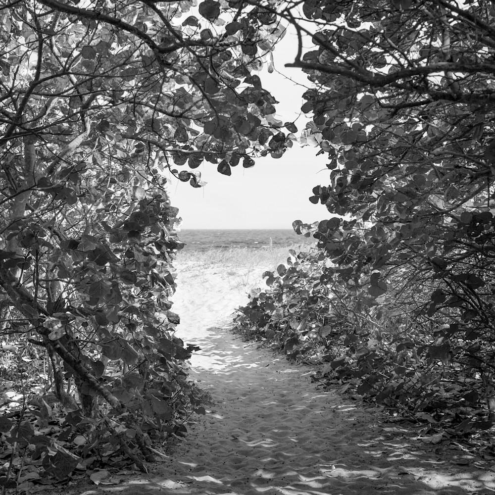 Path to the sea bw 28x40 npiyxd