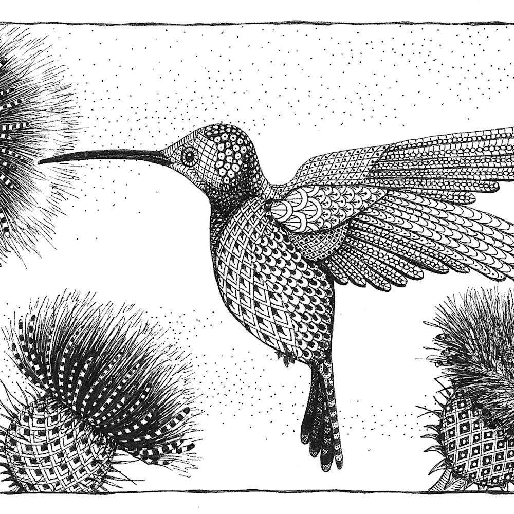Hummingbird thistle ws43dx