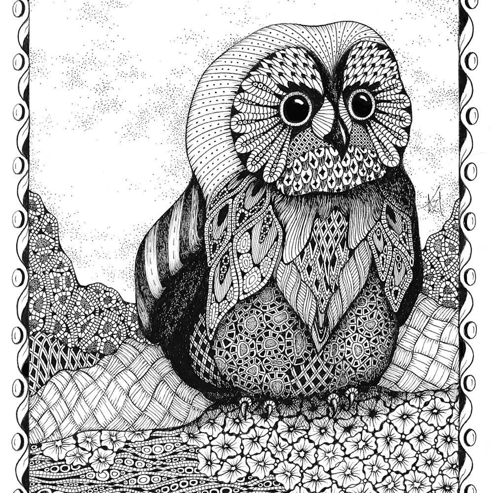 Owlet pb3q6h