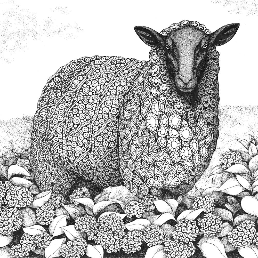 Sheep wanderlust ogptdf