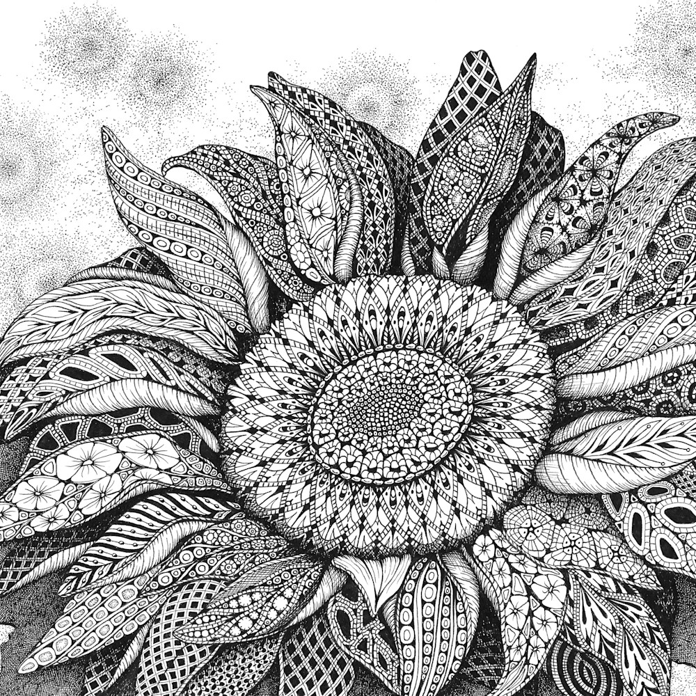 Sunflower song of summer vhlygw