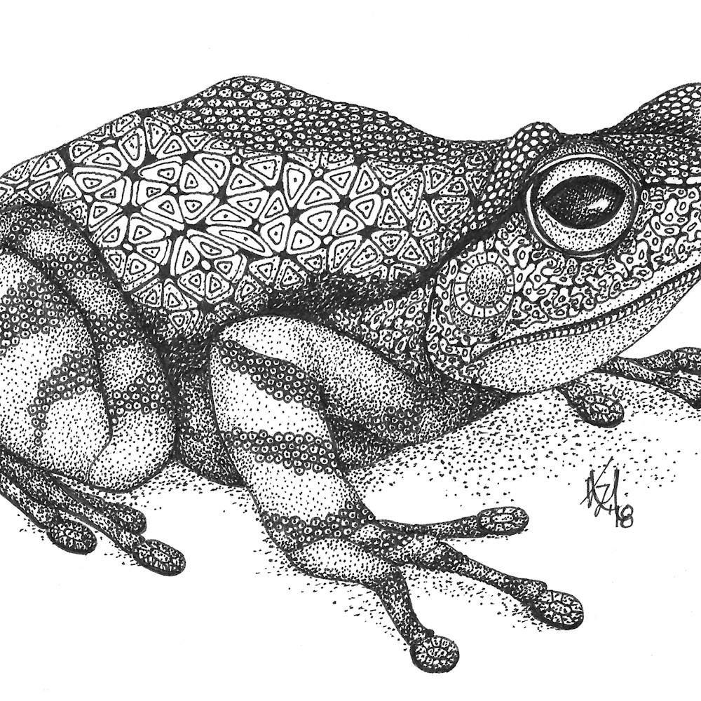Frog tjudqh